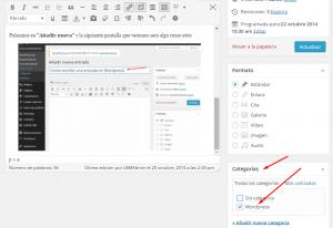 Cómo crear una entrada en WordPress